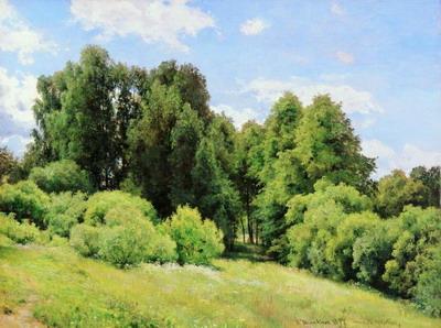 Шишкин И.И. Полянка. 1897